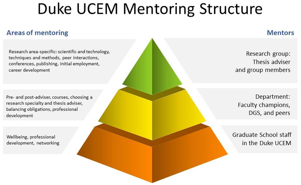 UCEM mentoring structure